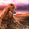 لعبة بازل صورة الحصان و الغروب